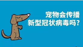 """《势界POWERCIRCLES》携手众明星,发起""""万⼈承诺善待⽣命""""在线公益倡议活动"""